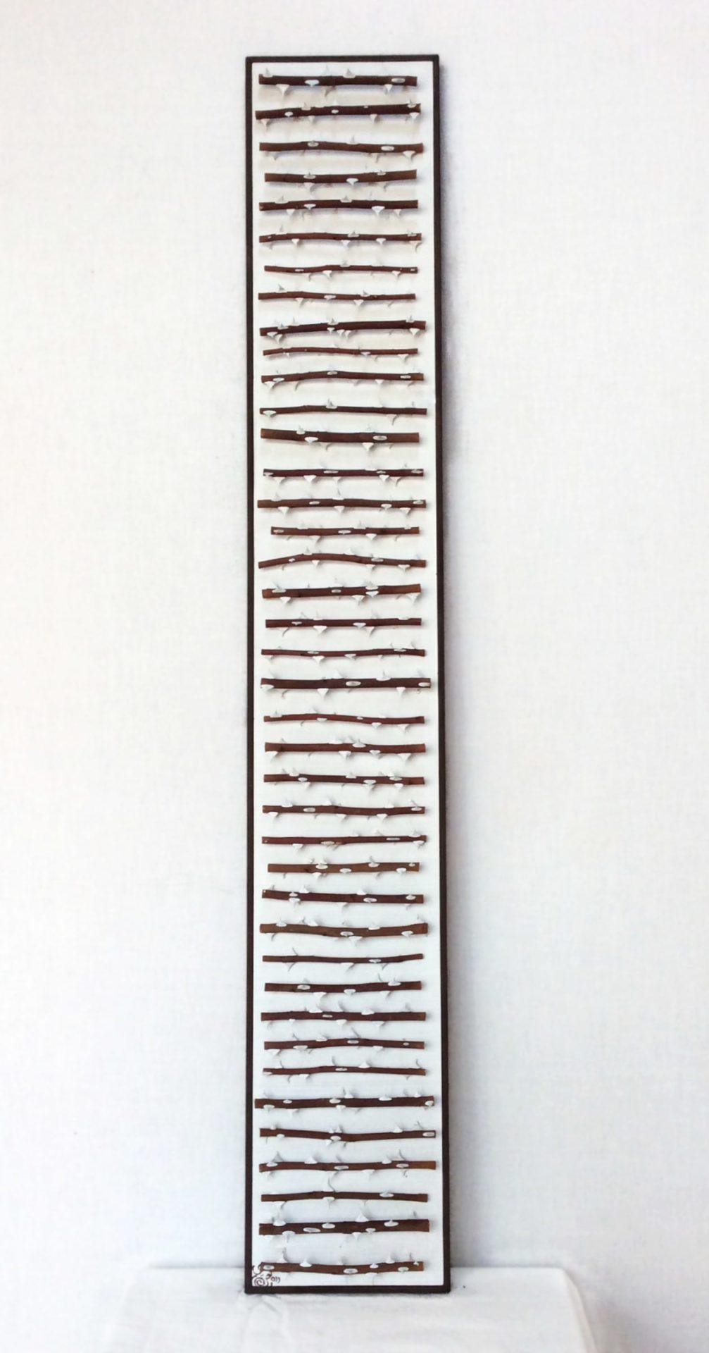 Bild 1,00 x 0,16 m Rosenästchen / weiße Dornen (2016)